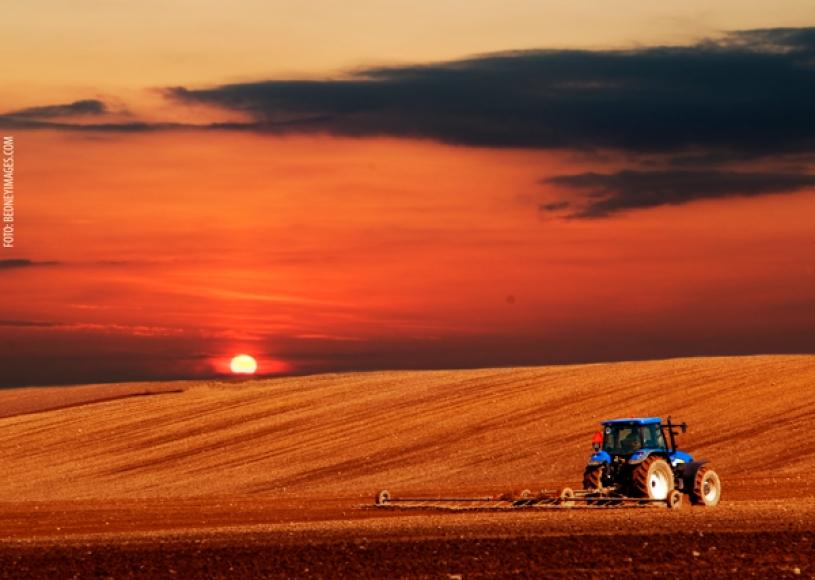 Mapeamento aponta inovação para setor agro