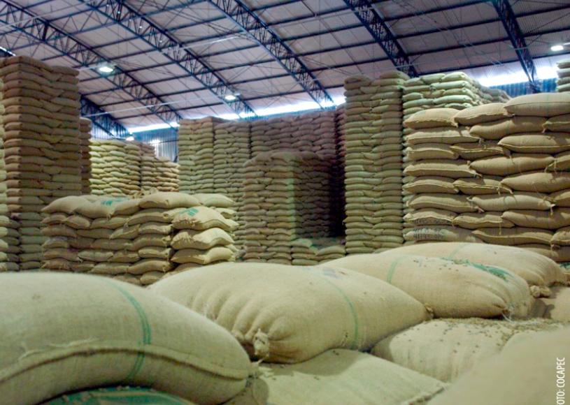 Exportações de café brasileiro para China aumentam 23% em 2019